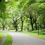 A Milano nascerà un grande Parco Metropolitano