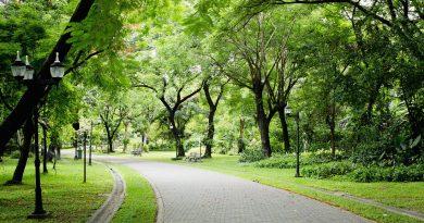 Parco Metropolitano
