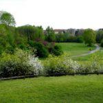 Parco Nord Milano coordinerà realizzazione del Forlanini
