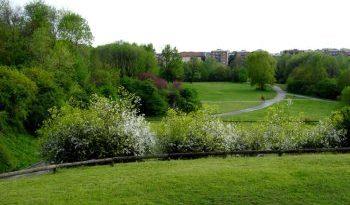 Parco Nord Milano coordina progetto Forlanini