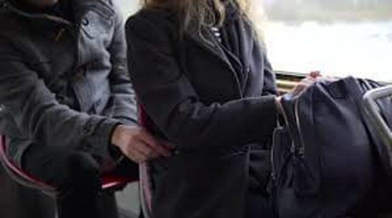 borseggio sulla linea N25