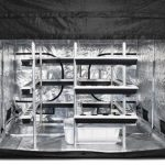 Coltivare le piante nelle grow room: cosa sono e a cosa servono