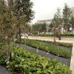 Costantin Stroe trovato morto nei Giardinetti di piazza Luigi di Savoia