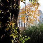 Donazione di verde a Milano: l'impegno dei privati