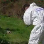Ventenne trovata cadavere a Busto Arsizio: corpo in decomposizione