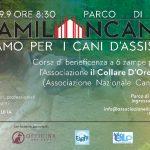 StraMilanCanina: a Milano corsa di beneficienza per i cani d'assistenza