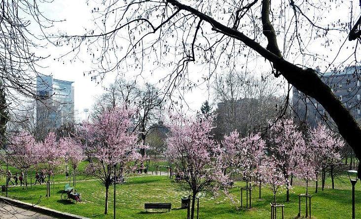 Milano Parco Monte Stella