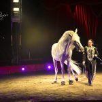 Brescia: arriva lo spettacolare Maya Orfei Circo Madagascar