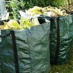Raccolta degli scarti vegetali a Como: ecco le regole