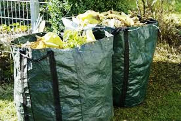 raccolta scarti vegetali