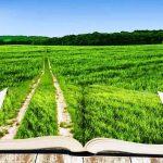 Richiamo UE all'Italia sulla questione nitrati in agricoltura